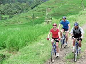 Cycling In Mount Batur and Kintamani Village