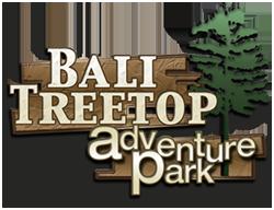 Bali Tree Top Logo1